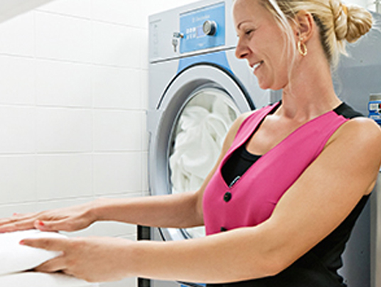 Laundry Profit Sharing Schemes